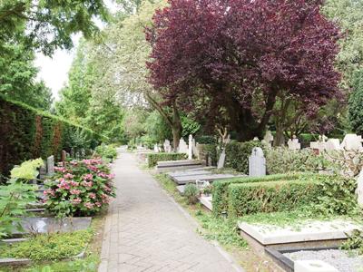Begraafplaats Buitenveldert